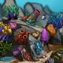 Découvre le monde du corail