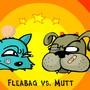 Bataille entre un chat et un chien rigolos