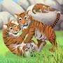 Occupe toi des bébés tigres
